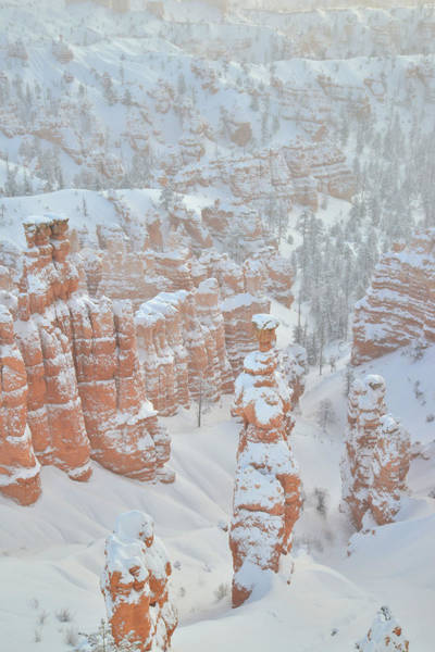 Photograph - Thor's Hammer In Snow by Ray Mathis