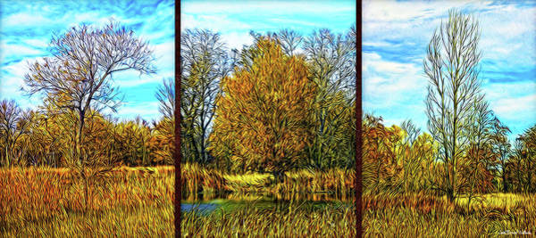 Digital Art - Three Autumn Trees - Triptych by Joel Bruce Wallach