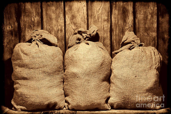 Photograph - Three Bags In A Warehouse by American West Legend By Olivier Le Queinec