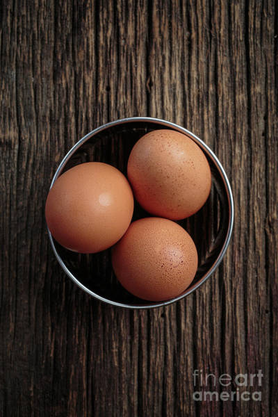 Egg Shell Photograph - Three Brown Eggs by Edward Fielding