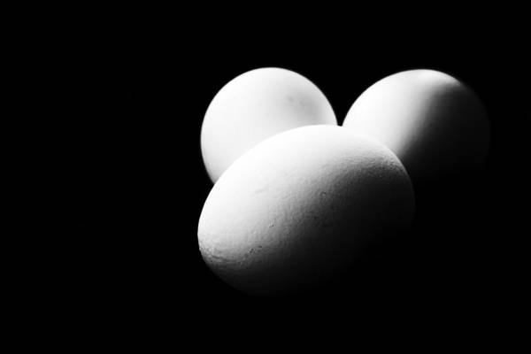Photograph - Three Eggs In Black And White by John Williams