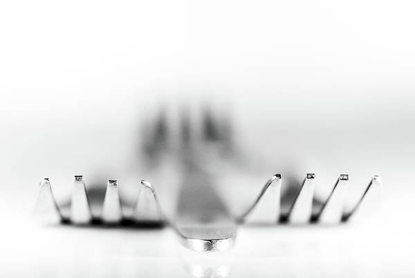 Photograph - Three Forks by Gary Gillette