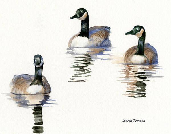 Wild Life Painting - Three Geese With Black Necks by Sharon Freeman