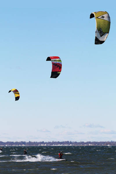 Photograph - Three Kites by William Selander