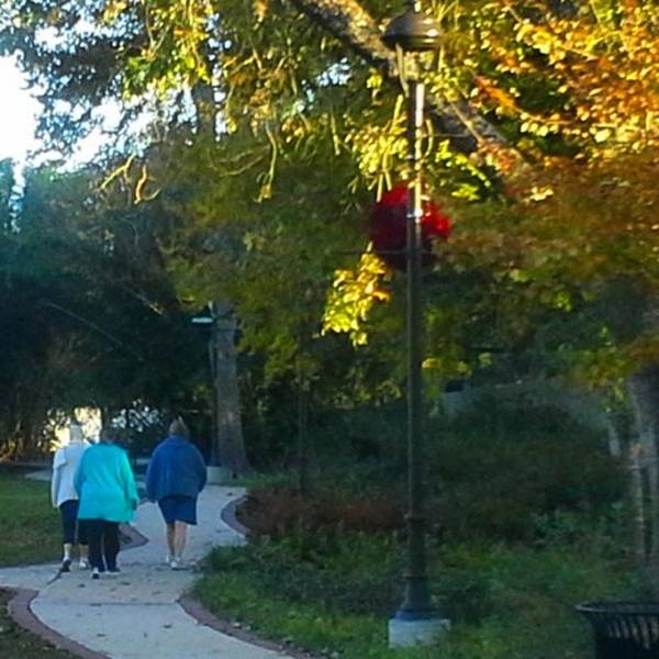 Photograph - Three Lady's Walking In Grove by Cheray Dillon