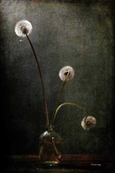 Photograph - Three Little Lights by Randi Grace Nilsberg