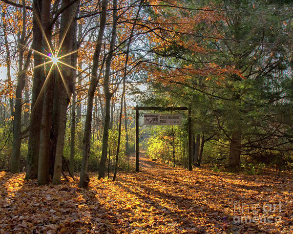 Photograph - Three Meadows Trail Head by Rod Best