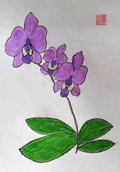 Painting - Three Orchids by Margaret Welsh Willowsilk