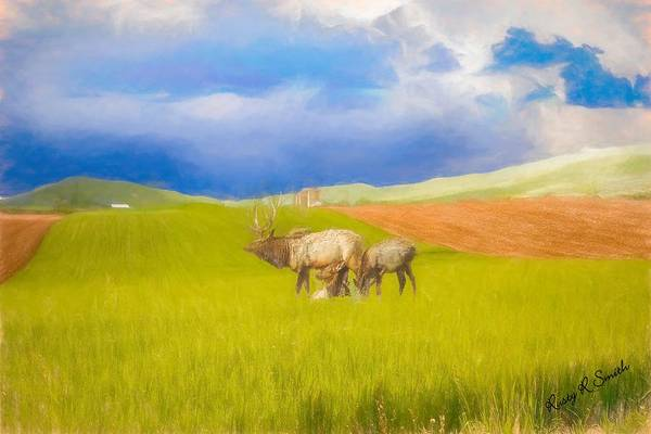 Digital Art - Three Pa. Elk Feeding. by Rusty R Smith