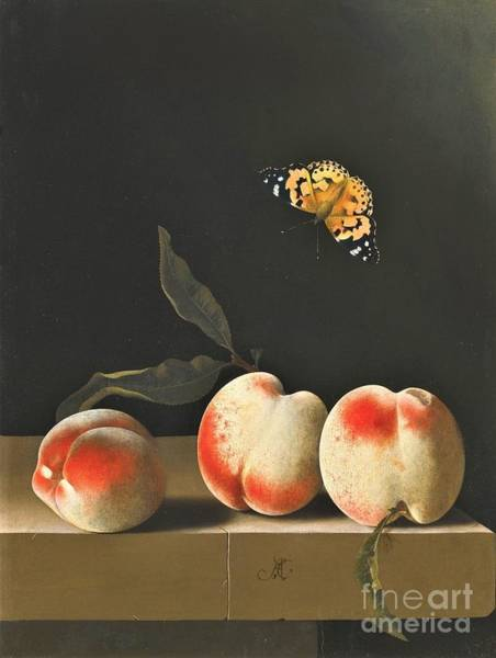 Wall Art - Painting - Three Peaches On Ledge by Pg Reproductions