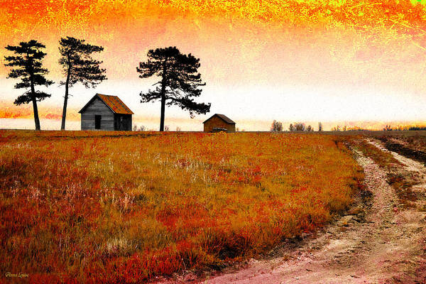 Photograph - Three Pines Shack by Anna Louise