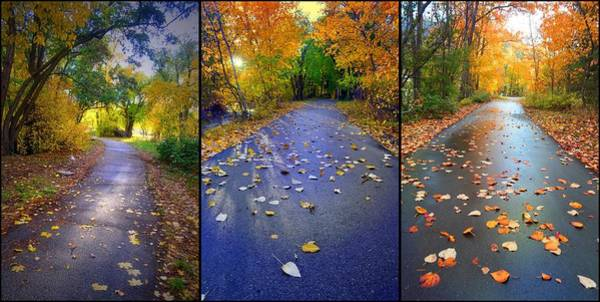 Photograph - Three Roads by Tara Turner