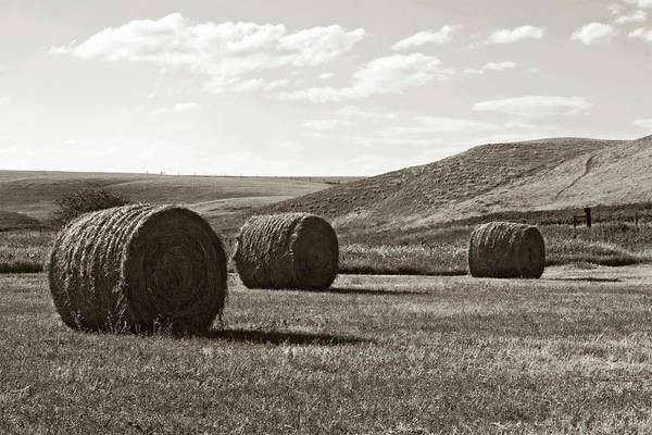 Photograph - Three Rolls Of Hay by Lorraine Devon Wilke
