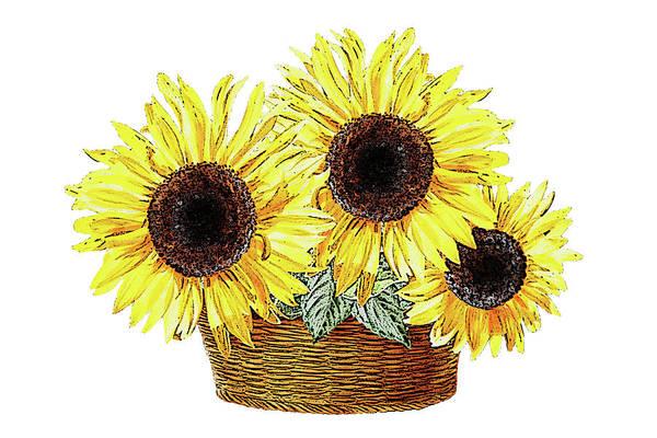 Painting - Three Sunflowers In The Basket by Irina Sztukowski