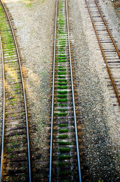 Downtown Raleigh Wall Art - Photograph - Three Tracks by Anthony Doudt