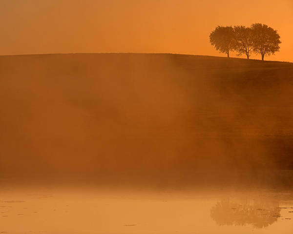 Trees In Fog Photograph - Three Trees  by Don Spenner