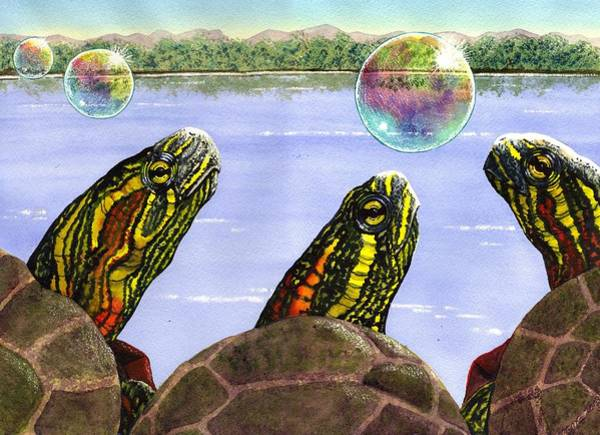 Turtle Painting - Three Turtles Three Bubbles by Catherine G McElroy