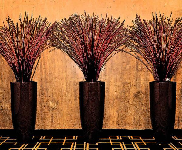 Photograph - Three Vases by Frank Mari