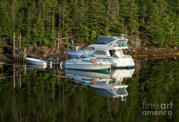 Photograph - Three White Boats by Les Palenik