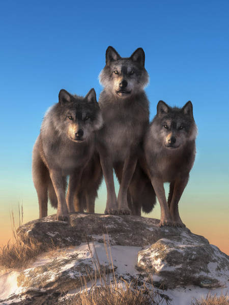 Susi Wall Art - Digital Art - Three Wolves Watching You by Daniel Eskridge