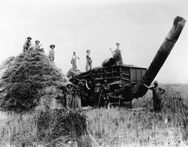 Photograph - Threshing, C1905 by Granger