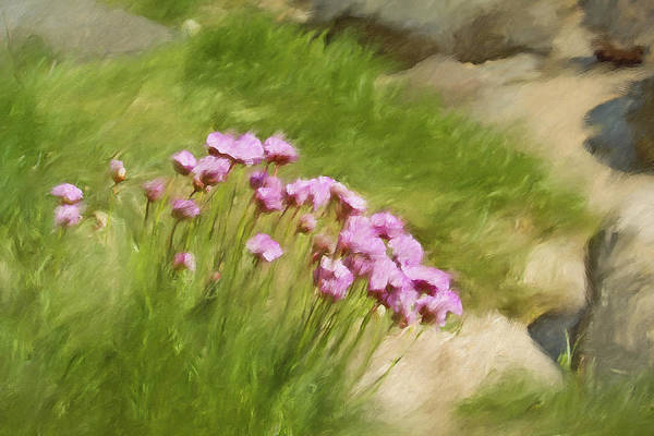 Painting - Thrift by Lutz Baar