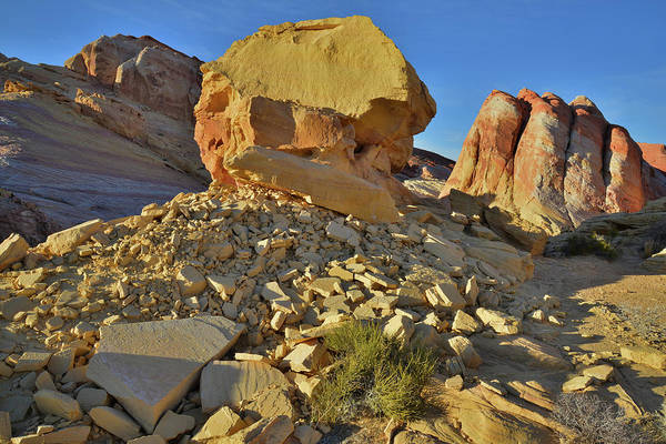 Photograph - Throne And Domes In Valley Of Fire by Ray Mathis