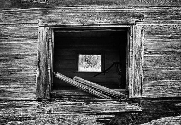Photograph - Through And Through by Phil Koch