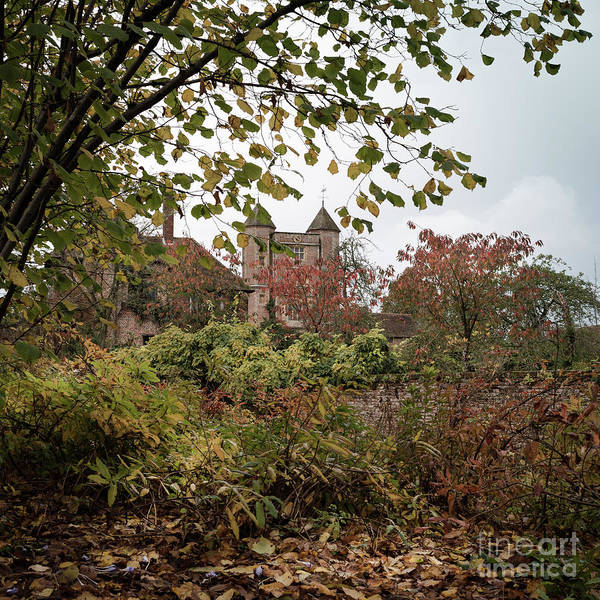 Photograph - Through Leaves, Sissinghurst Castle Gardens by Perry Rodriguez