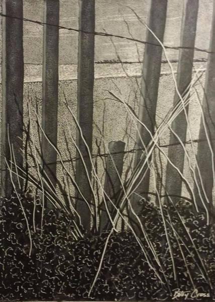 Through The Beach Fence Art Print