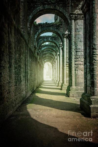 Wall Art - Photograph - Through The Colonnade by Evelina Kremsdorf