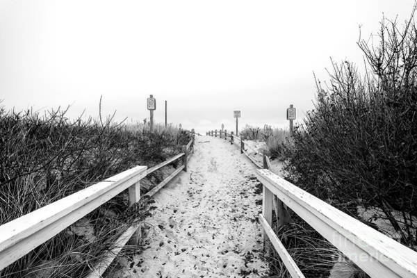 Photograph - Through The Dune At Beach Haven by John Rizzuto
