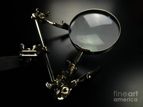 Photograph - Through The Looking Glass by Robyn King