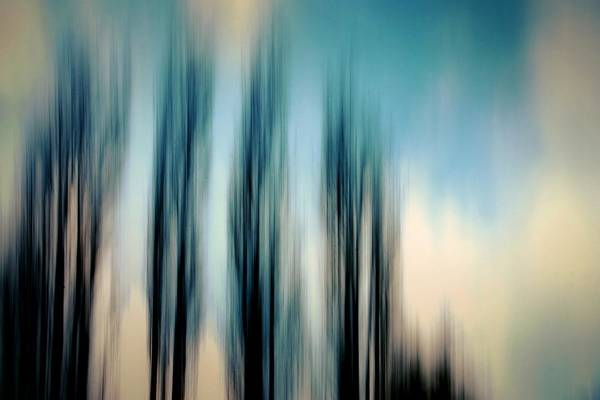 Photograph - Through The Trees by Patricia Strand