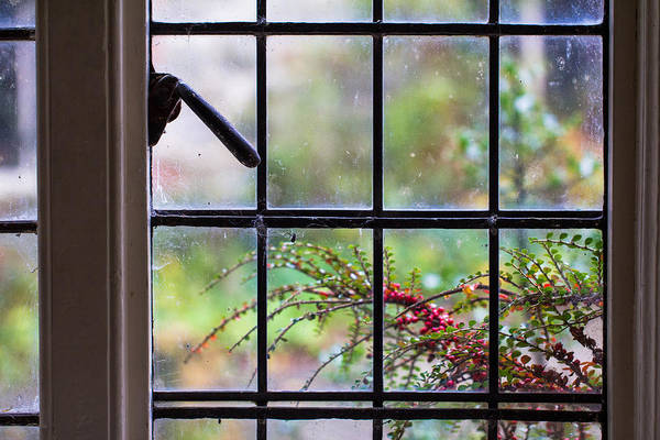 Photograph - Through The Window by Clare Bambers