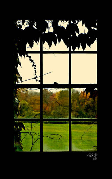 Photograph - Through The Window by Paul Gaj