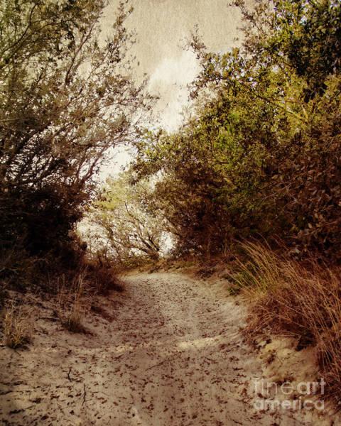 Jocky Photograph - Thru The Dunes by Tom Gari Gallery-Three-Photography