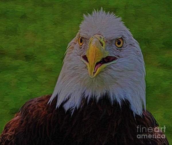 Painting - Thunder Eagle by Deborah Benoit