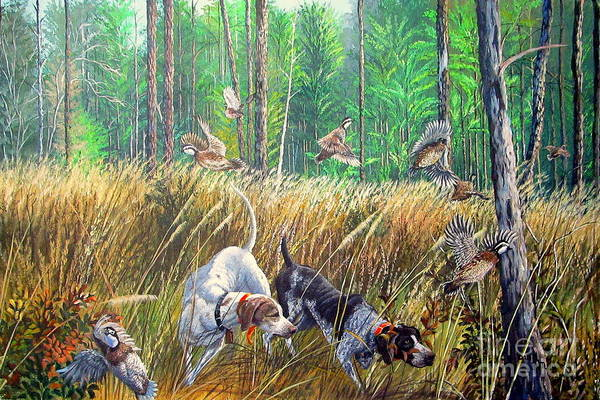 German Pointer Painting - Thunder In The Pines- Bobwhite Quail Hunting by Daniel Butler