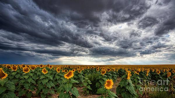 Photograph - Thunder On The Plains by Jim Garrison