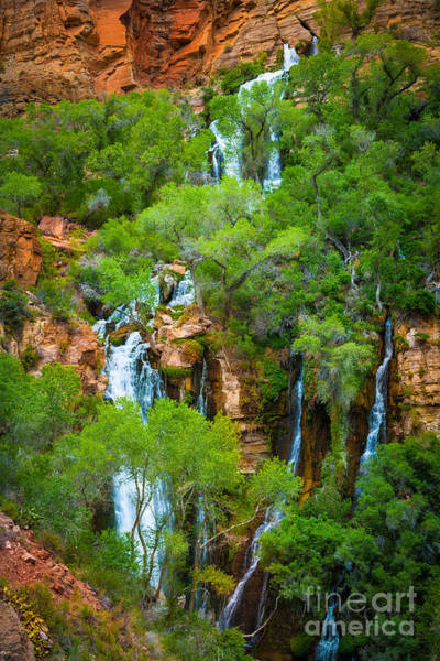 Colorado Springs Photograph - Thunder River Oasis by Inge Johnsson