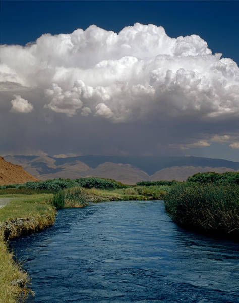 Photograph - 2a6738-thunderhead Over Owens River  by Ed  Cooper Photography