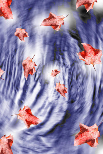 Digital Art - Thunderstorm Leaves  by Cathy Beharriell