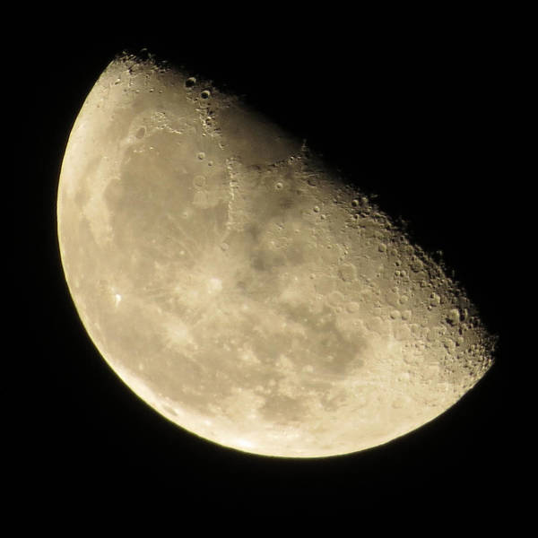 Photograph - Thursday Moon by Denise Beverly