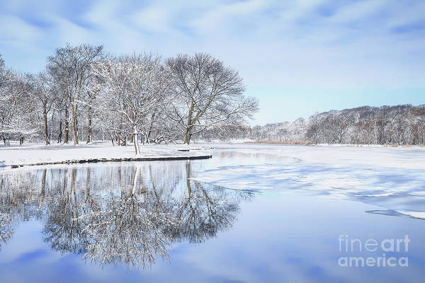 Pond Photograph - The March Of Winter by Evelina Kremsdorf