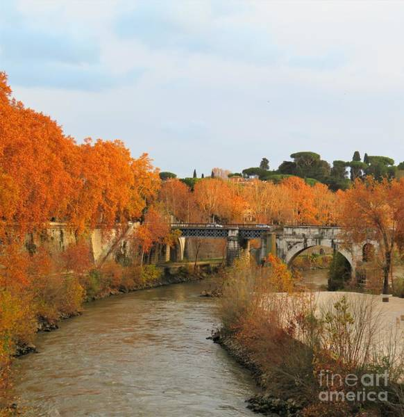 Photograph - Tiber River In Autumn 2 by Laurie Morgan