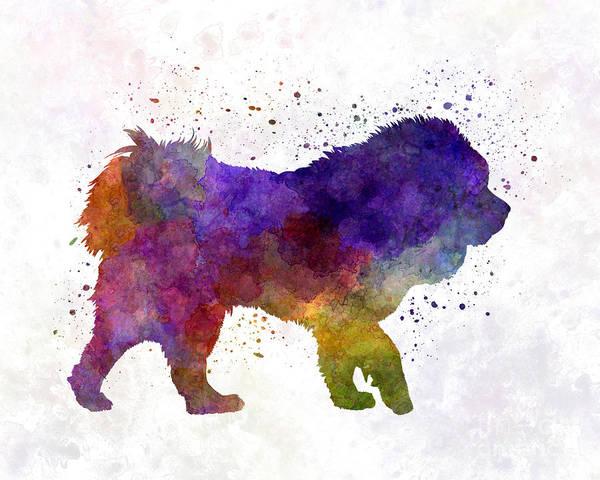 Tibetan Mastiff Painting - Tibetan Mastiff In Watercolor by Pablo Romero