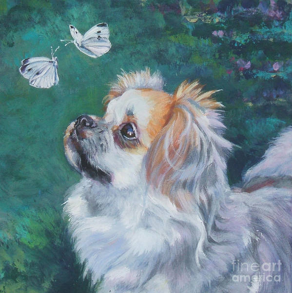 Tibetan Wall Art - Painting - Tibetan Spaniel With Butterfly by Lee Ann Shepard