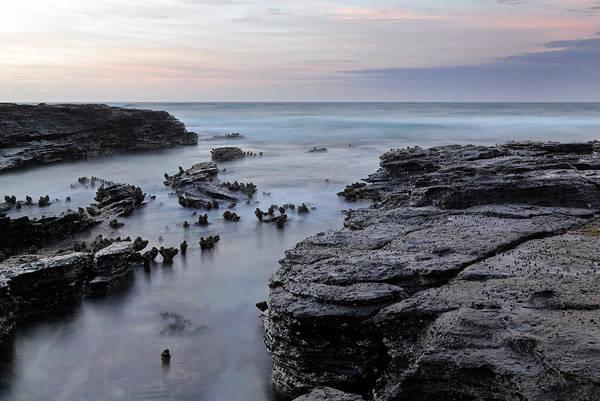Photograph - Tidal 1 by Nicholas Blackwell