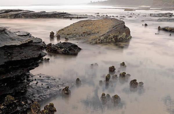 Photograph - Tidal 4 by Nicholas Blackwell